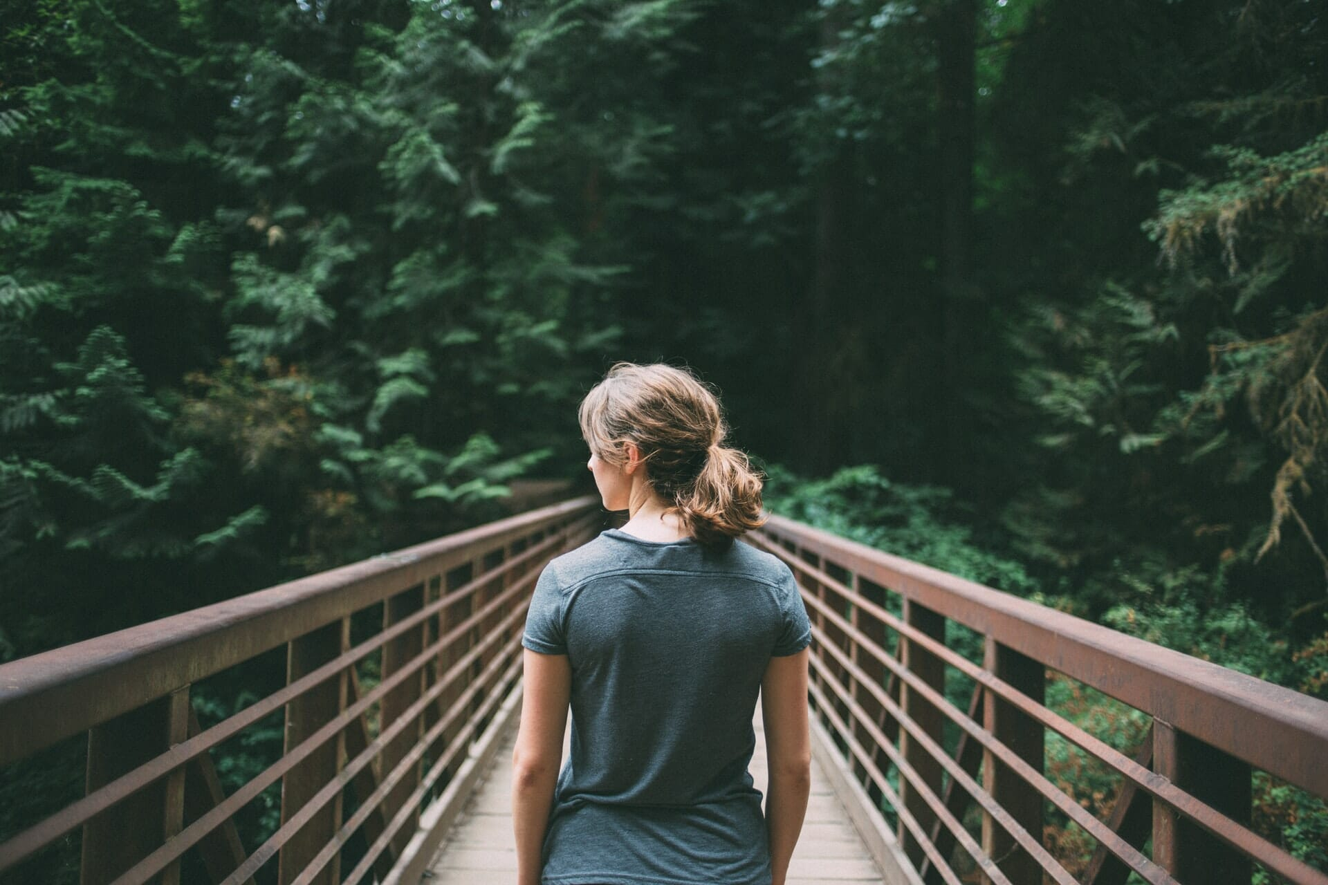 Person walking on bridge towards a forest.