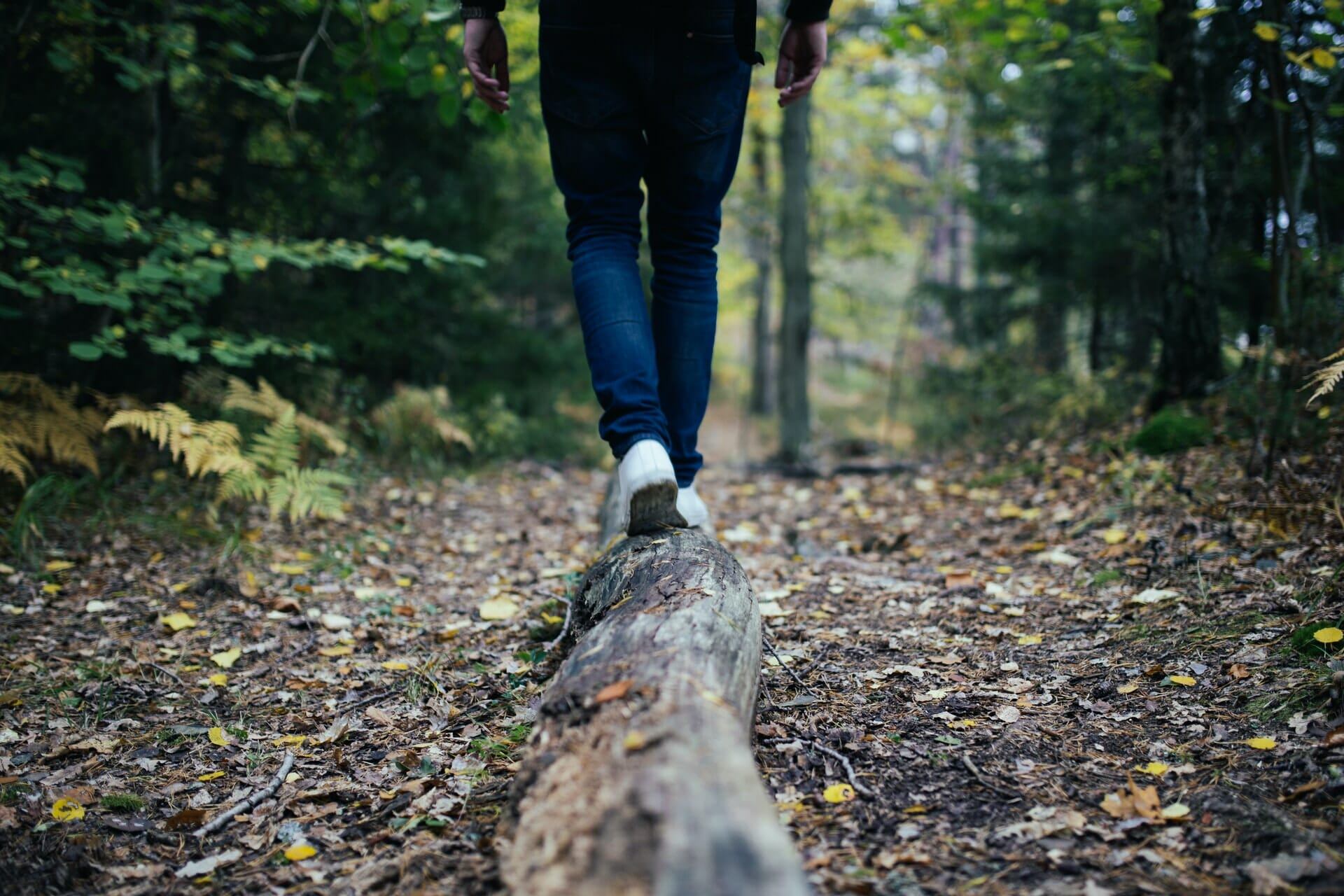 Person walking on log in the forest.